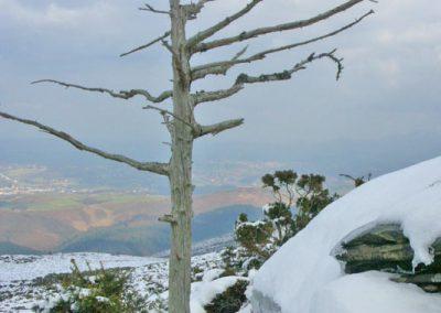 Les versants de la Rhune sous la neige