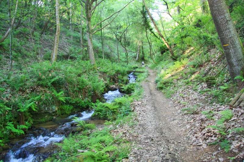 Chemin menant à l'Ursuya