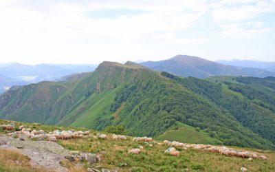 Les crêtes d'Iparla (depuis la ferme Bordozar Berroa)